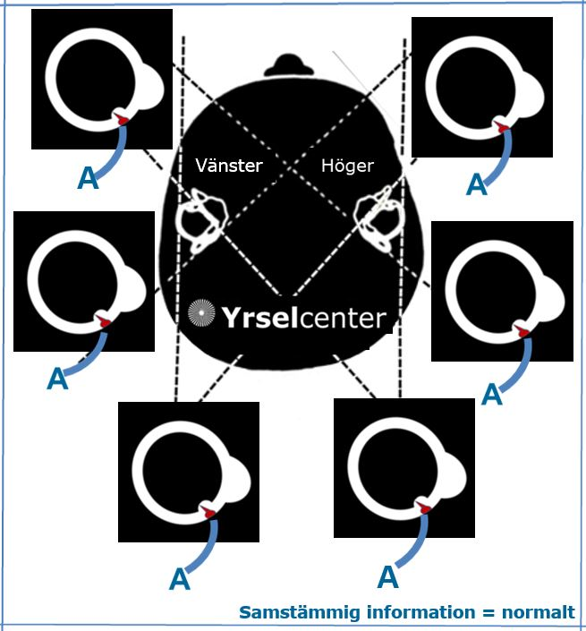 Yrselcenter_samstammig_information_ar_normalt