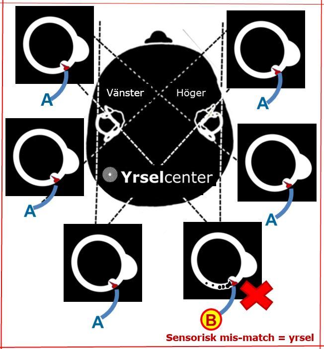 Yrselcenter_sensorisk_mismatch_ar_yrsel